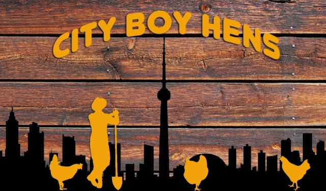 cropped-badgercity-boy-hens.jpg